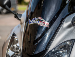 wildbad touring usa sticker